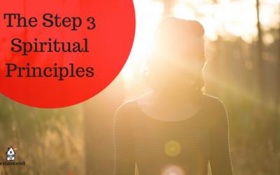 The Step Three Spiritual Principles